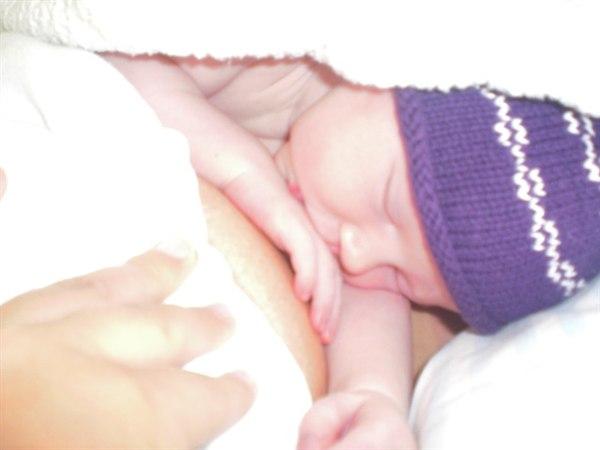 maven efter fødslen dolly viborg