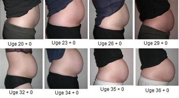 gravid mave uge for uge