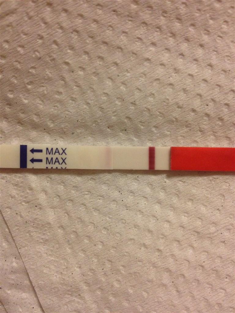 gravid trods negativ graviditetstest