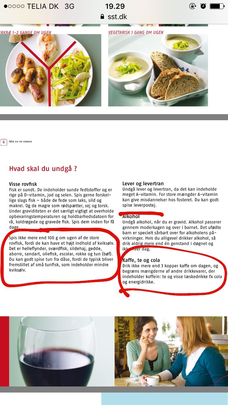 Hvad må man ikke spise som gravid? side 2