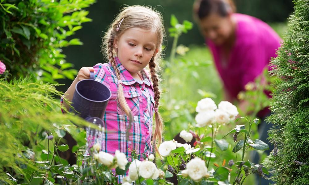 7 ting Bedste kan lave med børnebørnene i sommerferien