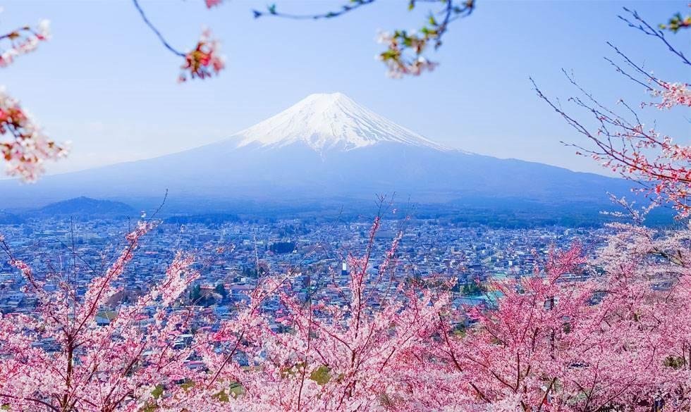 Tokyo med børn: 12 steder I skal bo, spise og opleve