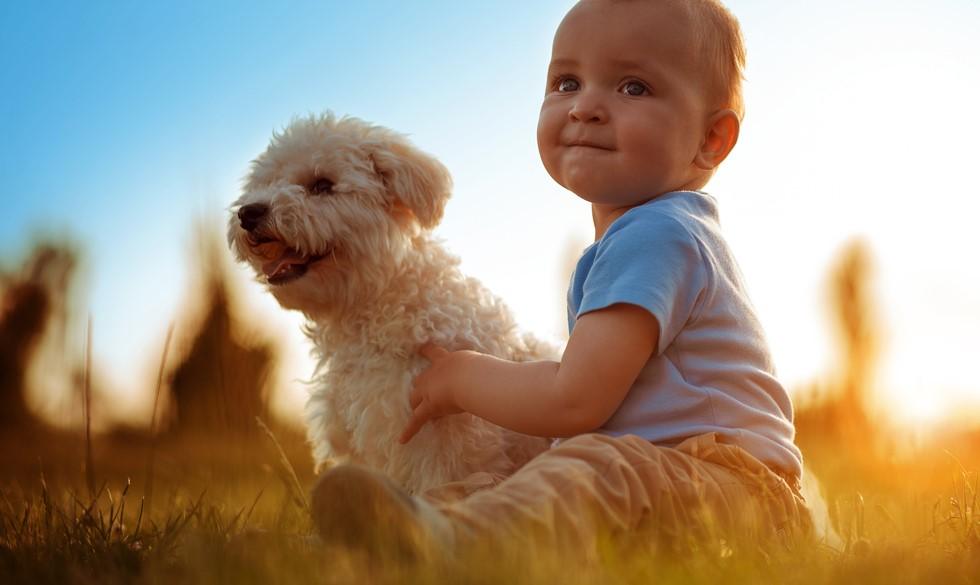 Sådan ved du, om dit barn er klar til at få hund