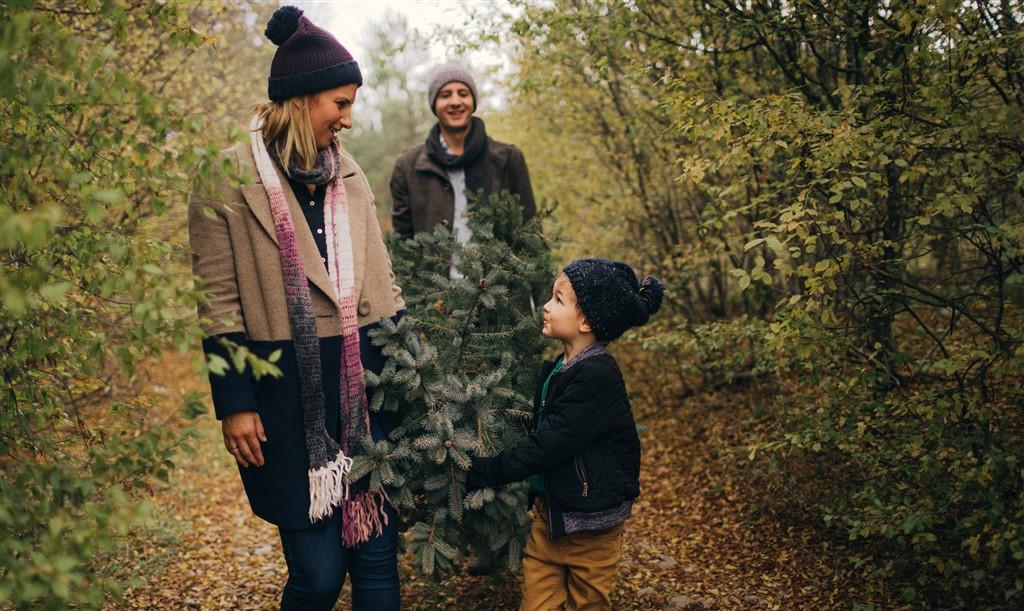 11 ting I kan lave i juleferien