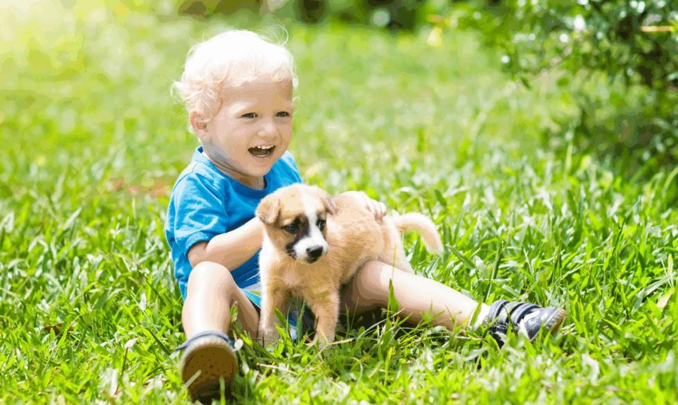 Navne, der både virker til baby og dyr